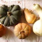 pumpkin&squash